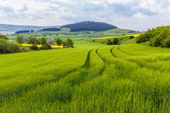German Spring Countryside Landscape Stock Images