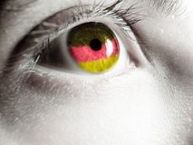German supporter Stock Image