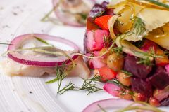 German traditional salad with beets, apple, egg and herring in a bowl, selective focus royalty free stock photography