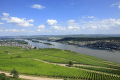 German Vineyards Royalty Free Stock Image