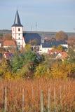 German vineyards. Westhofen, Germany - November 1, 2010 - Town of Westhofen near Mainz in Rhine-Hesse Rheinhessen Germany with vineyards royalty free stock image