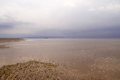 German Wadden Sea. Holm Oland royalty free stock image