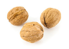 German walnuts Stock Images