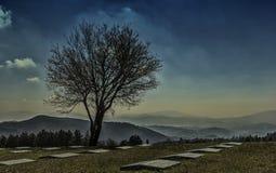 German war cemetery Stock Photos