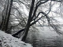German Winter Landscape Royalty Free Stock Photo