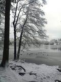 German Winter Landscape Royalty Free Stock Image