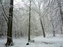 German Winter Landscape Stock Photography