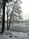 German Winter Landscape Royalty Free Stock Images