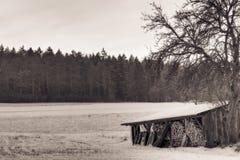 German Winter Royalty Free Stock Image