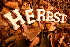 German word for autumn Royalty Free Stock Images
