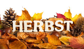 German word for autumn. Herbst, written on dry leaves with wooden letters, white background stock image