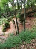 Germans beautifull woods. Old nature wood stone epic germans beautifull stock images