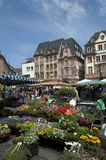 germany średniorolny rynek Mainz Zdjęcie Stock