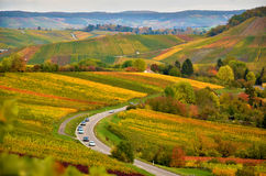 Germany autumn landscape with the view on vineyards. Vineyards in autumn in the south of germany Royalty Free Stock Photo