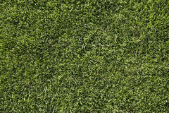 Germany, Bavaria, Icking, Football ground grass, close up Royalty Free Stock Photography