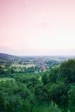 Germany,Bavaria,Weingartstal Trees and pink sky Stock Image