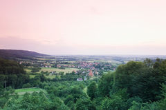Germany,Bavaria,Weingartstal trees and pink sky Stock Photography