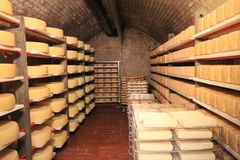 Germany cheese in the chill room stock photography