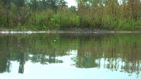 germany Czubik (1846 M) och Konczysty Wierch (2002 M) sikt från Trzydniowianski Wierch (1758 M) Biotope Livstid på vattnet stock video
