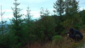 germany ` della foresta nera del ` di regione Forte vento nelle montagne stock footage