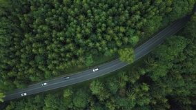Cars moving by road in forest in Germany. Top view. Germany forest road top view. Car crossing the road in Germany. Beautiful road in forest in Germany. View stock footage