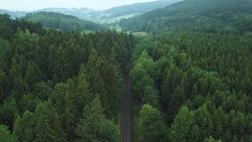 Beautyful landscape in forest in Germany. Railway in forest top view. Germany forest road top view. Car crossing the road in Germany. Beautiful road in forest in stock footage