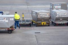 germany Frankfurt - f.m. - str?mf?rs?rjning 02 20 2019 Flygplats i staden av Frankfurt - ?r - str?mf?rs?rjning royaltyfria bilder