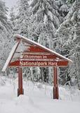 germany harznationalpark Fotografering för Bildbyråer