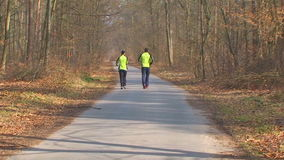 Germany.02.06.2014. Hockenheim. Autumn forest. two people fleeing in the woods along the path. On a paved path between the trees in the autumn run by two, a man stock video
