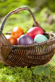 Germany, Lower Bavaria, Variety of Easter eggs in basket on moss Stock Photos
