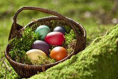 Germany, Lower Bavaria, Variety of Easter eggs in basket on moss Royalty Free Stock Image