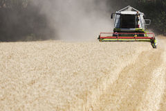 Germany, North Rhine-Westphalia, Combine harvester in field of wheat Stock Image