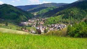 germany Região da floresta preta Pasto do monte com grama verde-clara imagens de stock