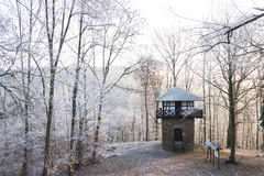 Germany, Rhineland-Palatinate, viewing tower and forest in winter Stock Photos