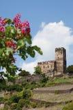Germany,Rhineland,View of burg gutenfels castle Stock Photo