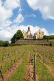 Germany,Rhineland,View of vineyards and arenfels cast Royalty Free Stock Photography
