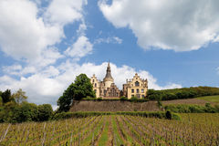 Germany,Rhineland,View of vineyards and arenfels cast Stock Images
