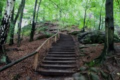 Germany, Saxony: A trail in a mountain forest. Germany, Saxony: Wooden staircase upwards with handrails among the stones and trees, covered with fallen leaves royalty free stock images