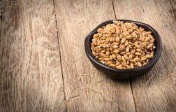Germe di grano germogliato Immagine Stock Libera da Diritti