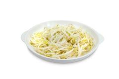 Germi di soia con il piatto isolato su fondo bianco, picchiettio di taglio fotografia stock libera da diritti