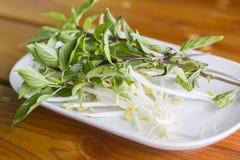 Germi di soia sul piatto Fotografia Stock