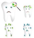 Germi e batteri del dente Fotografia Stock