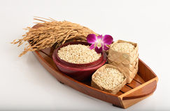 Germinated brown rice or GABA-rice. Royalty Free Stock Photo