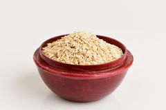 Germinated brown rice or GABA-rice. Stock Photography