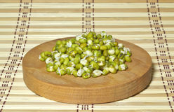 Germinated beans. Germinated seeds of legumes (soybeans) on the chopping board Royalty Free Stock Photo