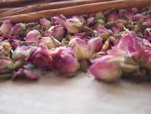 Germogli asciutti delle rose e della cannella Fotografie Stock