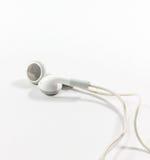 Germogli dell'orecchio Fotografia Stock Libera da Diritti