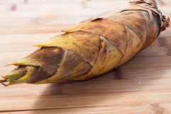 Germogli di bambù Immagine Stock Libera da Diritti