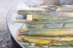Germogli di bambù d'ebollizione Fotografie Stock