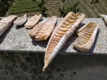 Germogli di bambù a secco Fotografia Stock